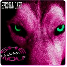 fiordaliso she wolf copertina cover special care