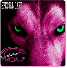fiordaliso she wolf copertina cover special care